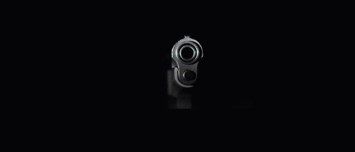 Gun, USA