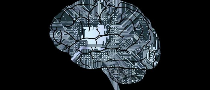 Science, Artificial Intelligence, Human Intelligence