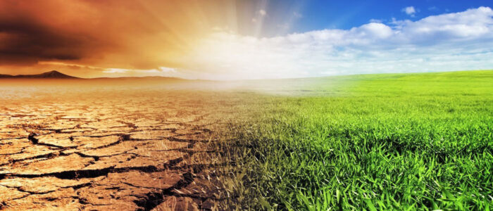 The Impact of Climate Change on Pakistan's Food Security