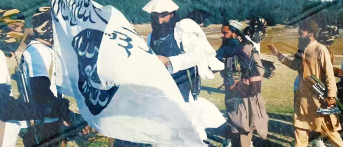 Major Takeaways from the TTP Rebranding